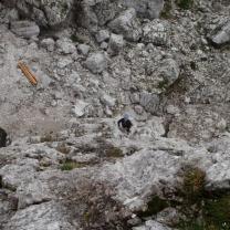 Dolomiti 2012 - Cortina d' Ampezzo - 28.06.2012_1517
