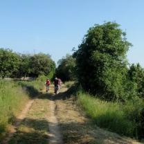 Parenzana - 18.06.2013_1802